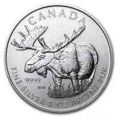 Kanada 2014 Moose 1 Unssi HOPEA BU